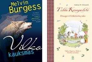 Gražiausios 2013 metų knygos