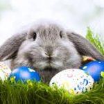 Artėjant gražiausiai pavasario šventei…