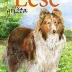 Knygos apie ištikimiausius žmogaus draugus – šunis